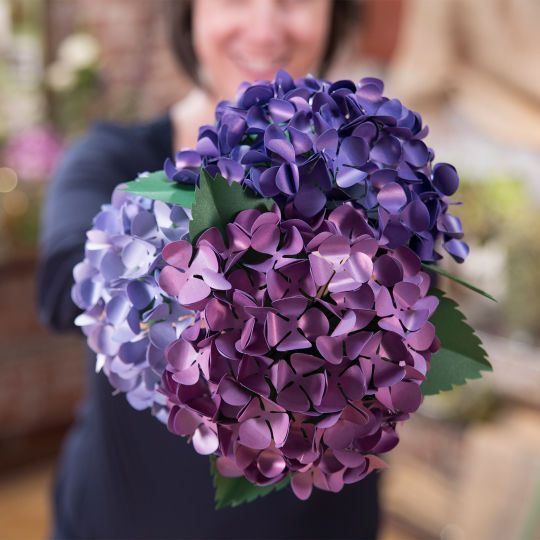 Cricut Paper Flowers Make A Hydrangea How To Make Paper Flowers Paper Flowers Flowers