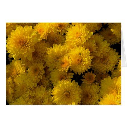 Golden Mums Card - photo gifts cyo photos personalize