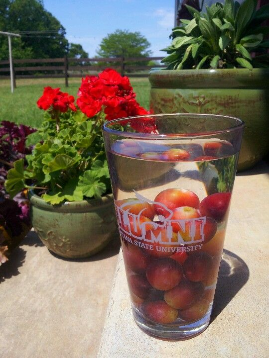 Try using frozen grapes in place of ice cubes to chill your drink with the added bonus of a sweet treat afterwards!