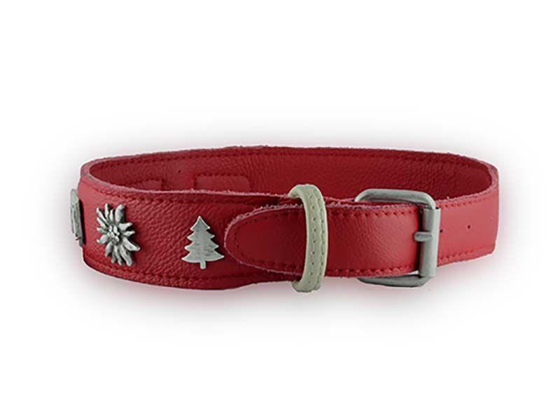 Collare Sogliola Christmas Red... vieni a vedere tutti i modelli su www.isiandfriends.it