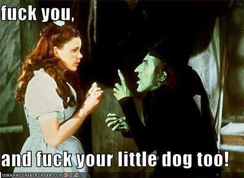 Wizard Of Oz Memes Google Search With Images Wizard Of Oz