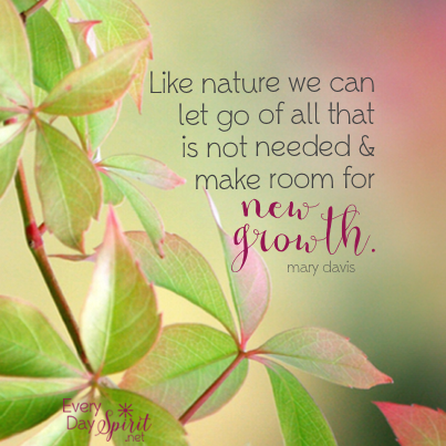 make room for new growth nature for the app of beautiful wallpapers wwweverydayspiritnet xo
