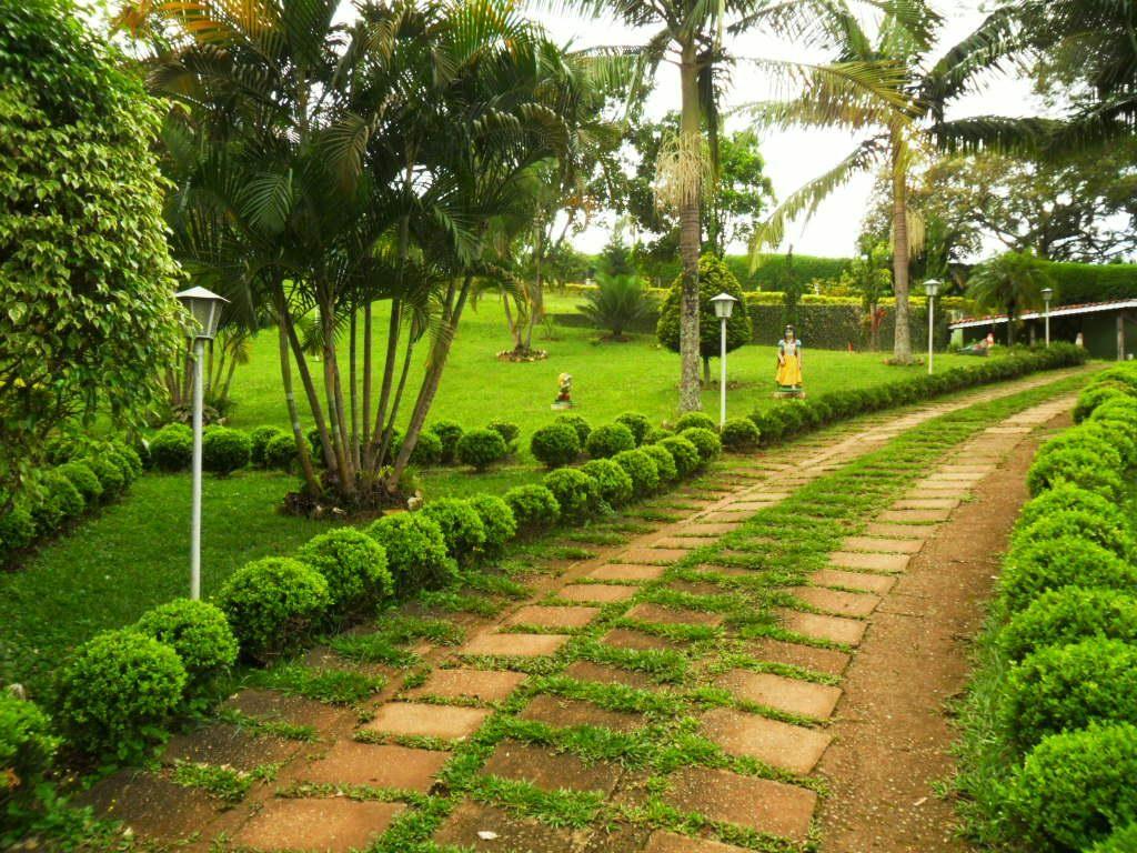 Pomar De Chacaras Pesquisa Google Vida No Campo Casa Jardim
