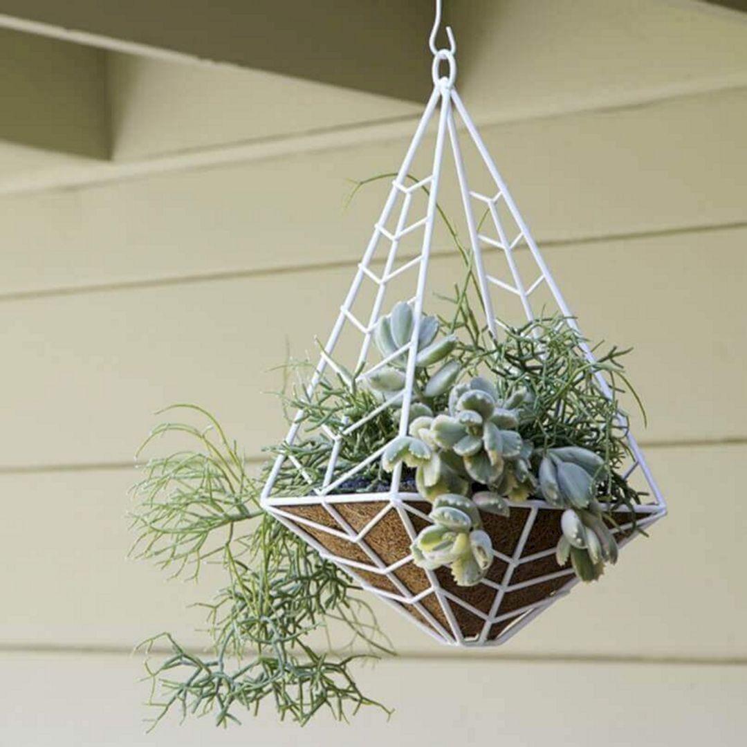 Majestic 12 Beautiful Hanging Basket Plants For Home Decoration Ideas Https Freshouz