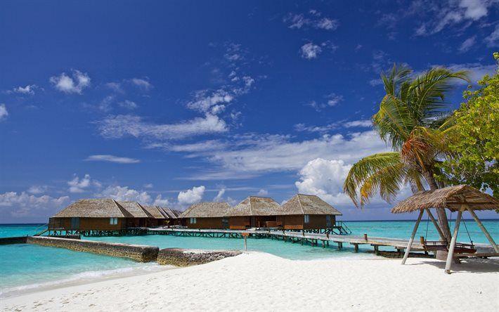 Herunterladen Hintergrundbild Sommer, Meer, Malediven