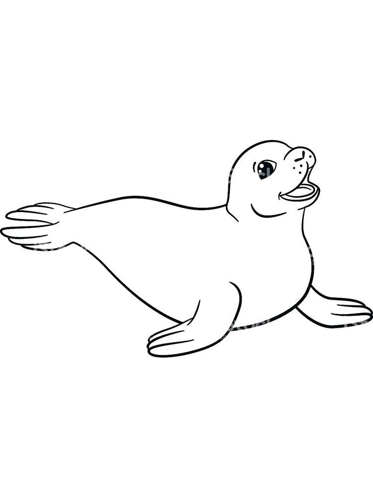 Coloring Pages Of A Seal Talking About Seals Is Truly Endless This Cute And Adorable Marin Lion Coloring Pages Animal Coloring Pages Printable Coloring Pages
