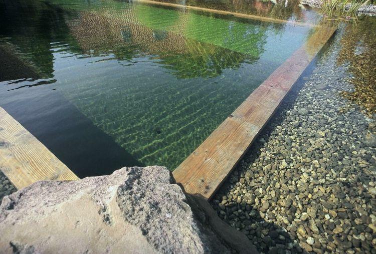 gartenteich-pool-anlegen-naturpool-kieselsteine-holz-rand-schlicht