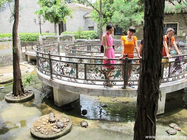 曾喬治 的生活精華 My Life Bits : 廣州番禺寶墨園:鯉魚多到爆!號稱有十萬條金魚和錦鯉。趙泰來博物館 Baomo Garden