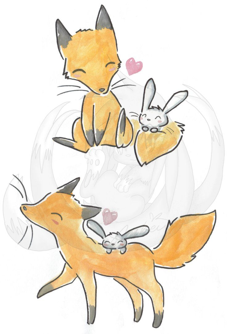 fox and rabbit relationship