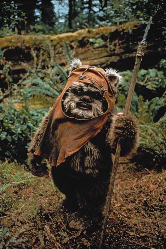 40 Buenos Platos Con Conservas Star Wars Personajes Episodios De Star Wars Soldados Star Wars