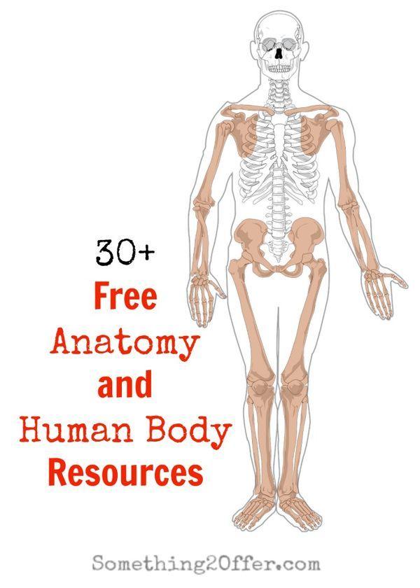 Free Anatomy and Human Body Resources - | Unit studies, Human body ...