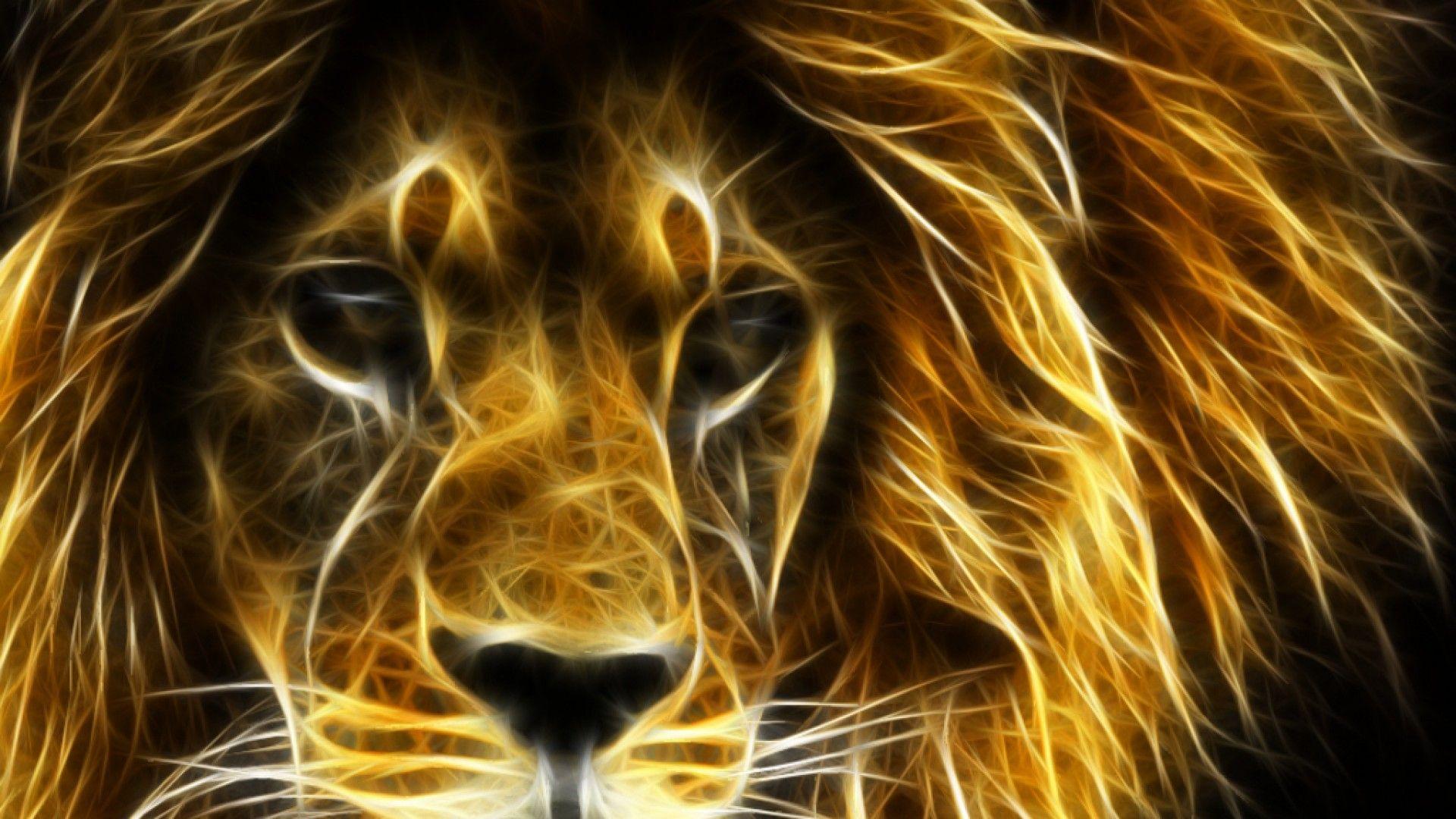 Обои лев, морда, животное. Животные foto 14