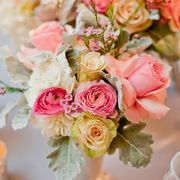 Bright and fresh flowers