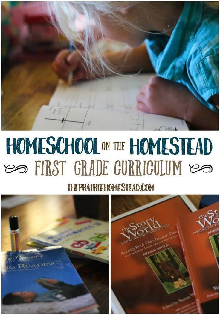 Pin on 1st Grade Homeschool Ideas & Curriculum
