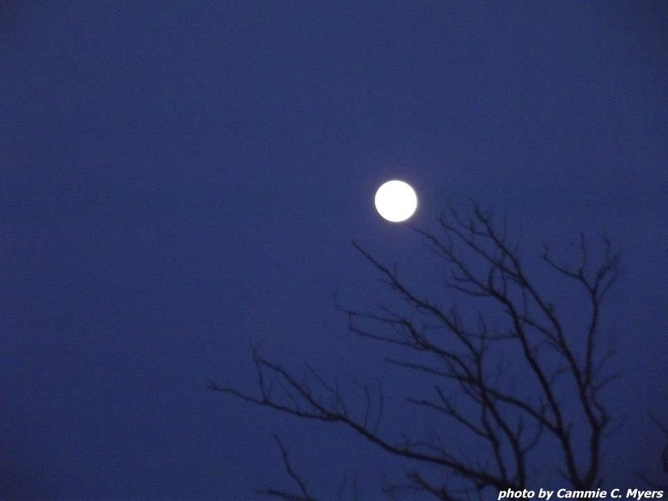 Full Moon  February 2013