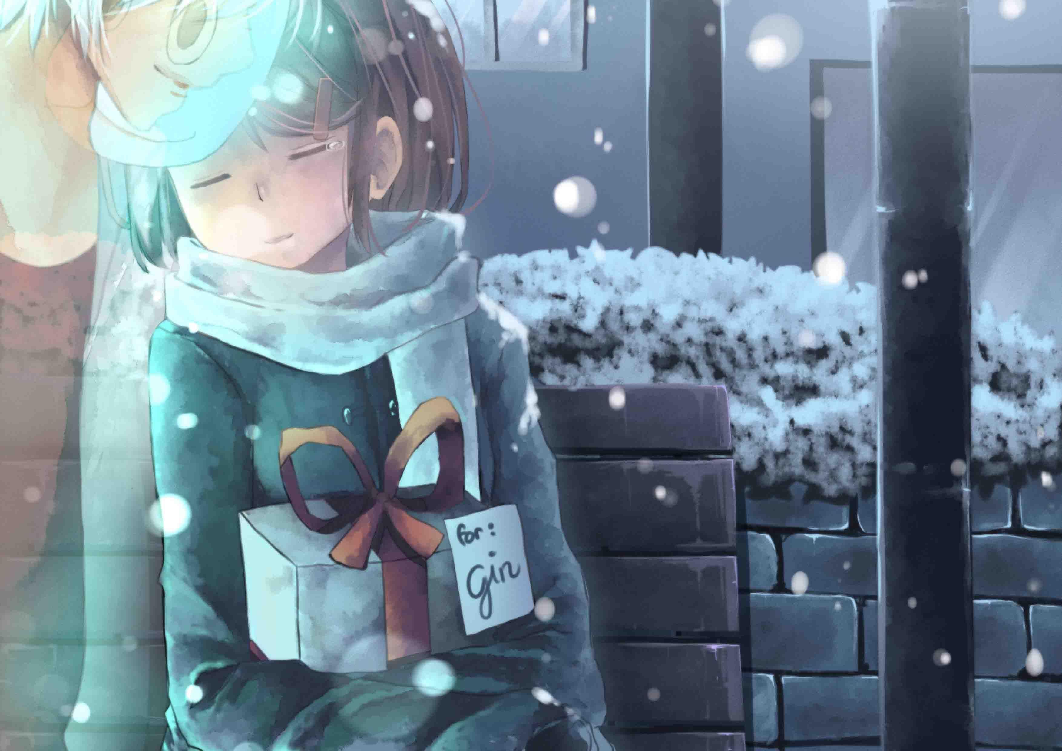 Hotarubi no Mori e Hotarubi no mori, Anime
