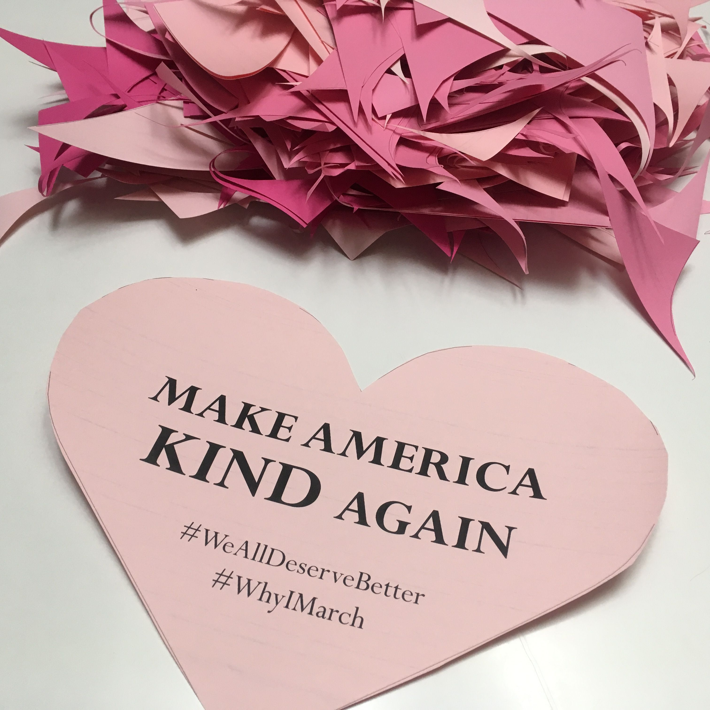 Make America Kind Again. Woman's March DIY sign.