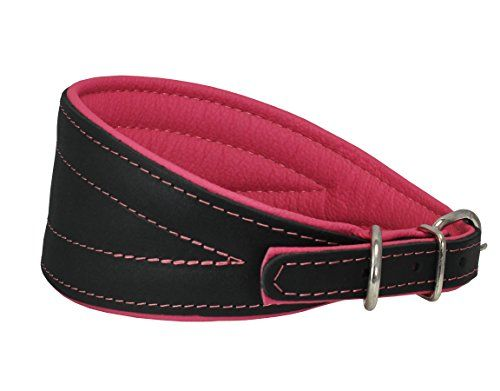 Large Leather Dog Collar Greyhound Lurcher Whippet Saluki WHITE GLOSS