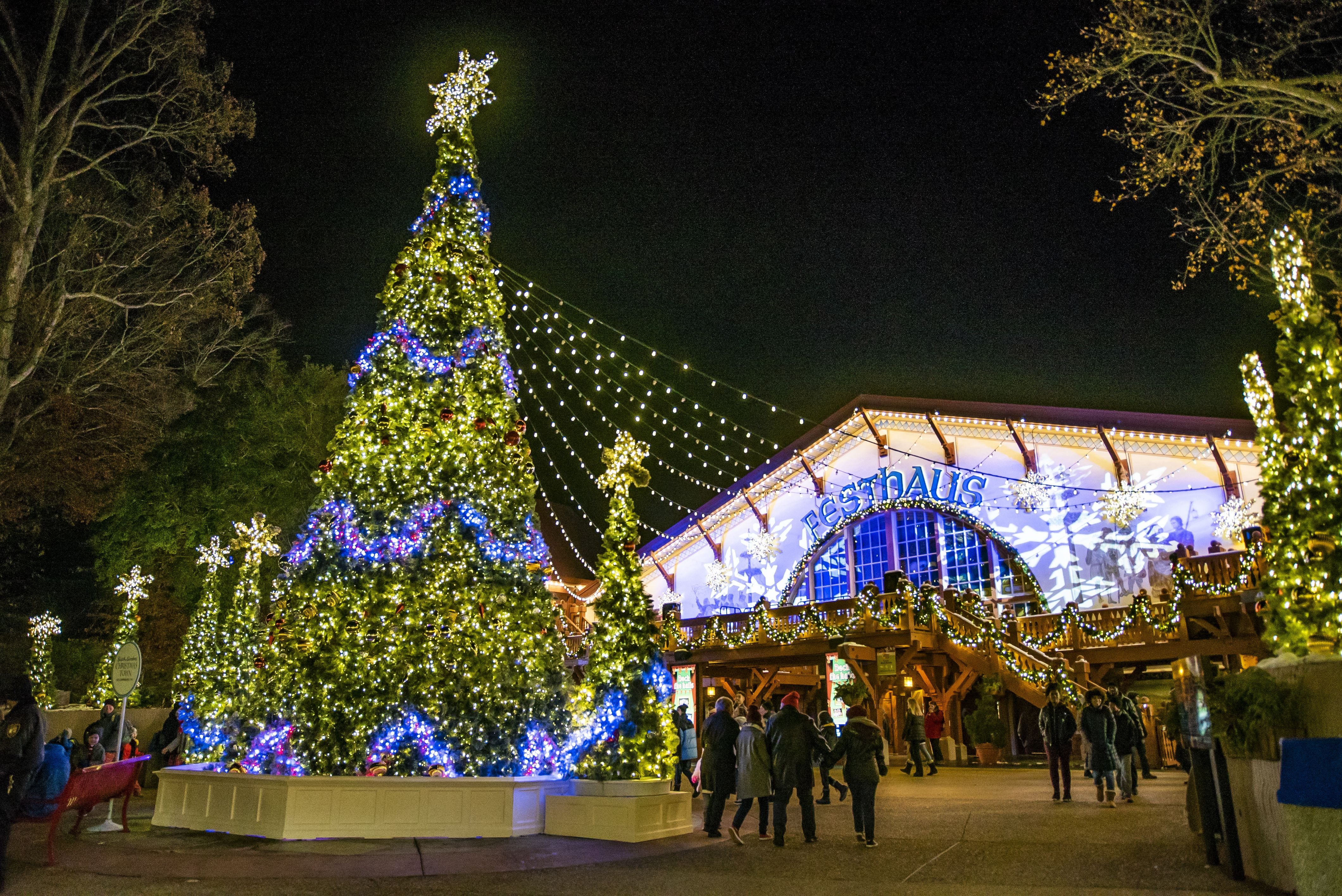 What Rides Are Open At Busch Gardens During Christmas Town