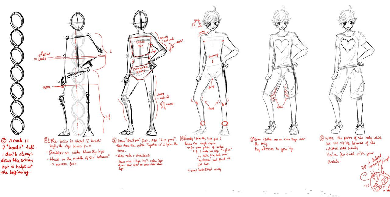 Tutorial Male Proportions Body Sketches Body Proportion Drawing Body Proportions
