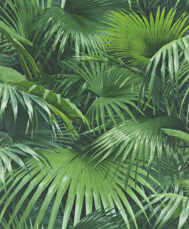 Tapete Palmen details zu tapete rasch crispy paper 524901 blätter palmen