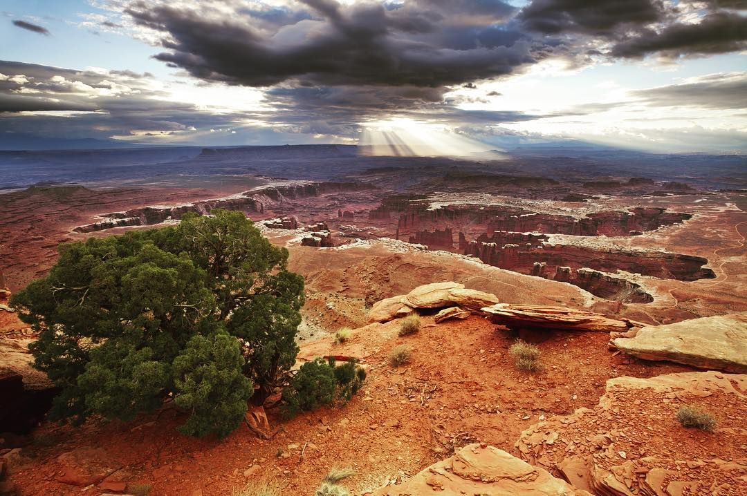 """: Canyonlands National Park  """"Overlooks rule at Island in the Sky  Once in Island in the Sky what we had read in our research was confirmed  the district is mainly centered around various overlooks from the high elevation of the island mesa top down into the canyons. Throughout our entire trip until this point we have advocated for people to go beyond the overlooks and tried to suggest creative ways to do that. But at Island in the Sky the numerous overlooks are where its at.""""…"""