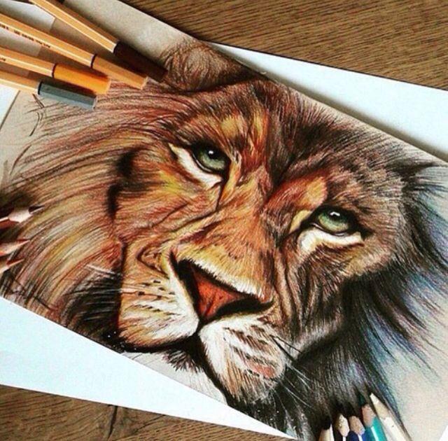 Leon Dibujos Impresionantes Dibujos Realistas Dibujos De