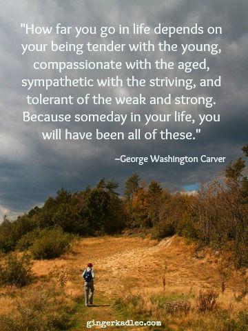 George Washington Carver Quotes George Washington Carver Quote  Quotes  Pinterest  George .