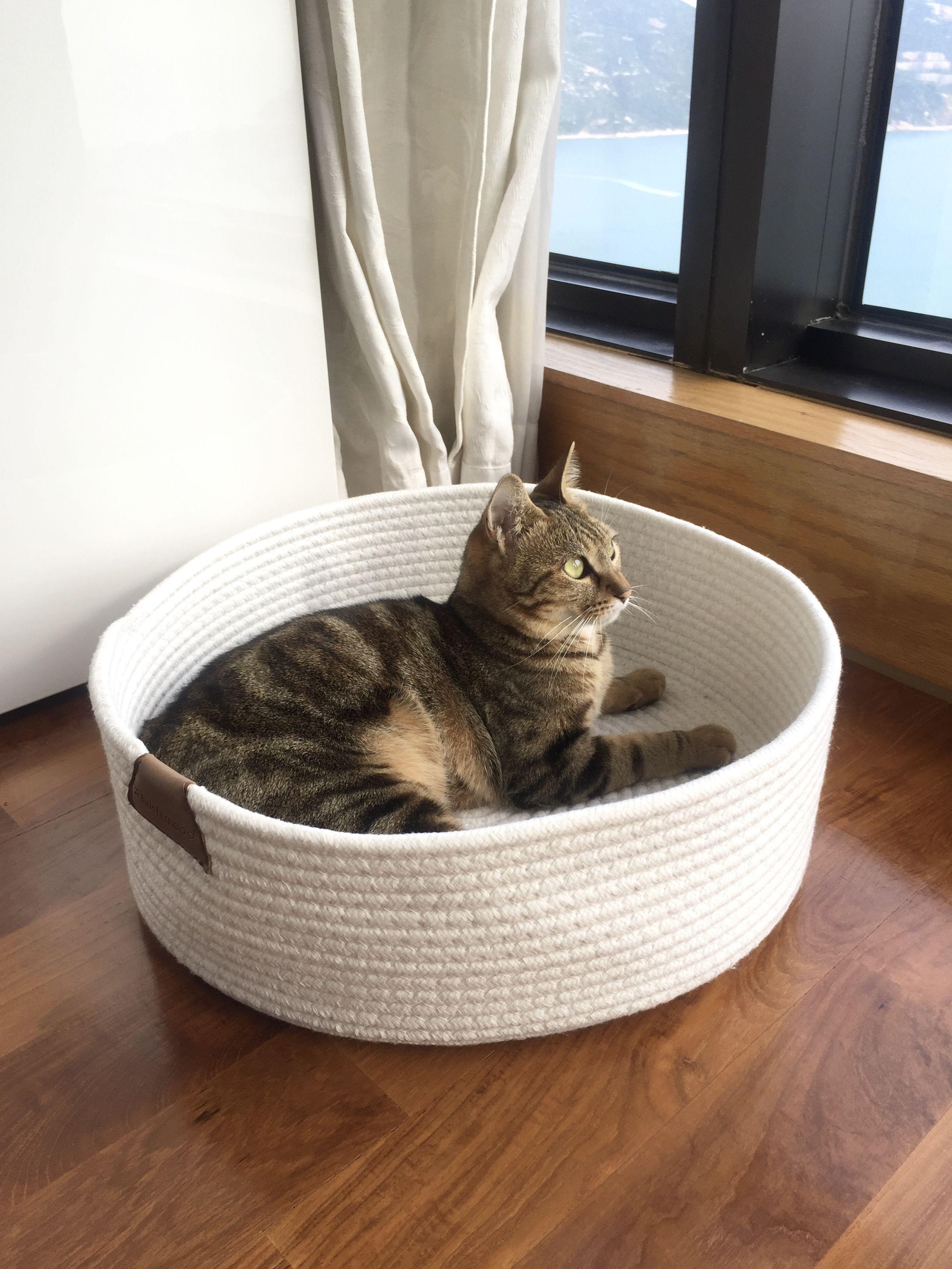 E Shop Pet Beds Cat Accessories Pets