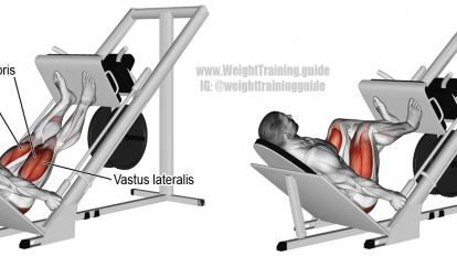 incline leg press exercise  fitness body all body
