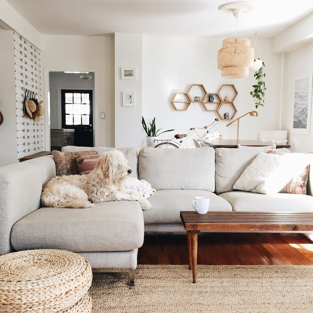 Light grey couch (With images) | Dreamy living room ...