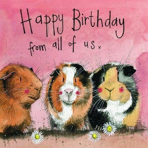 Verjaardagskaart Alex Clark Happy Birthday From All Of Us Cavia