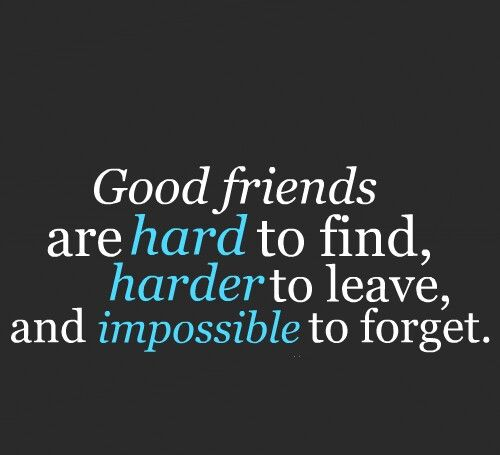 Pin By Shawna Jameson On Quotes Good Friends Are Hard To Find