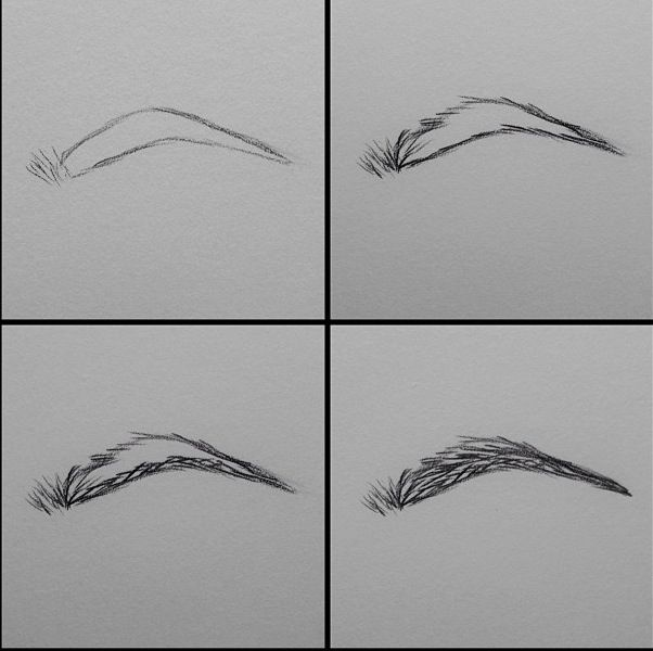 How to draw eyebrows this makes so much sense if you relate it to how you apply eyebrow pencil when putting on makeup
