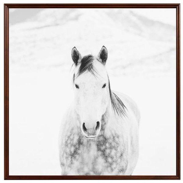 Pottery Barn Winter White Horse by Jennifer Meyers ($399) ❤ liked ...