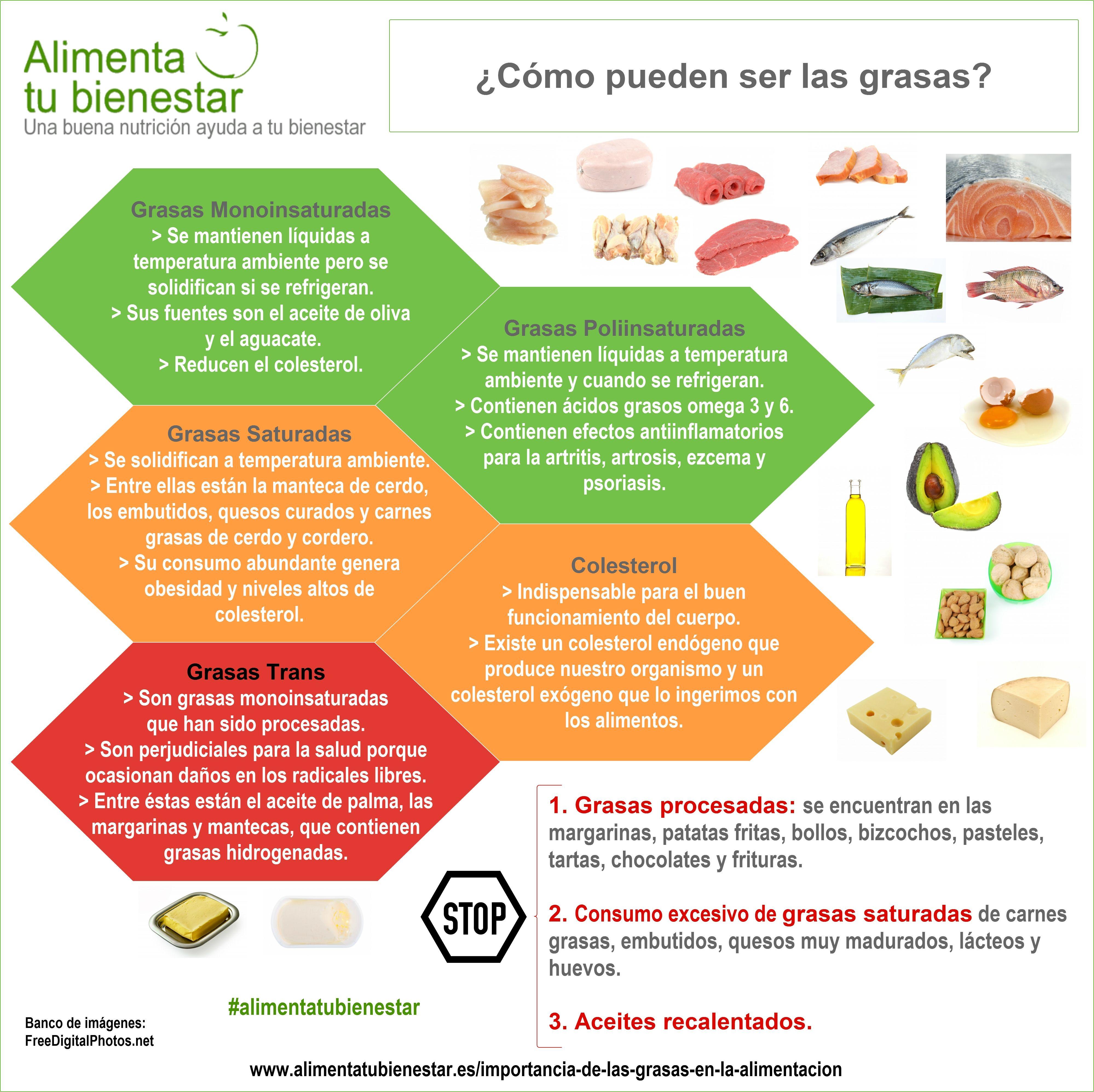 La Importancia De Las Grasas En La Alimentacion Consejos De Nutricion Dieta Y Nutricion Y Dieta Equilibrada