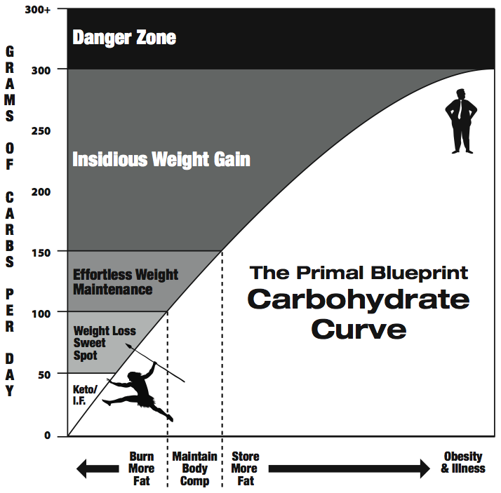 why fat not carbs are the preferred fuel for the human body be
