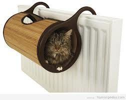 Resultados de la Búsqueda de imágenes de Google de http://humorgeeky.com/wp-content/uploads/2012/10/sitio-para-gatos-radiador.jpg