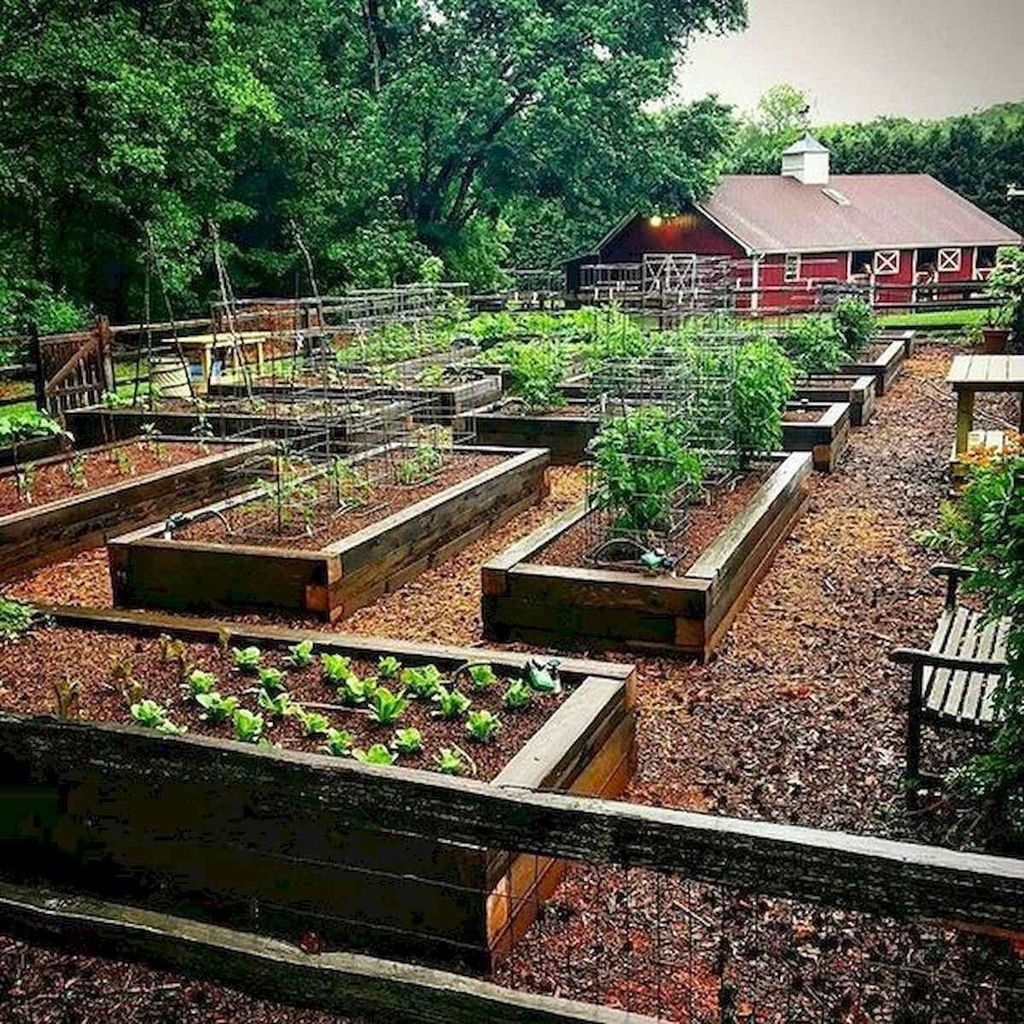 20 Raised Bed Garden Designs And Beautiful Backyard: 35 Inspiring Raised Garden Beds Best For Your Outdoor