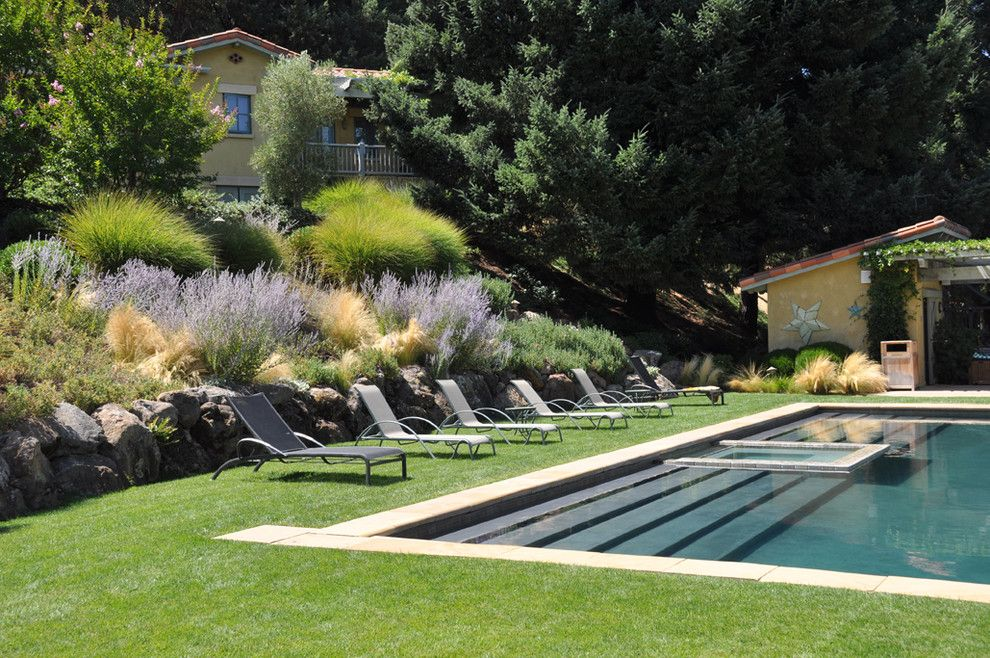 Cool landscape design around pool ideas in pool for Pool design on a slope