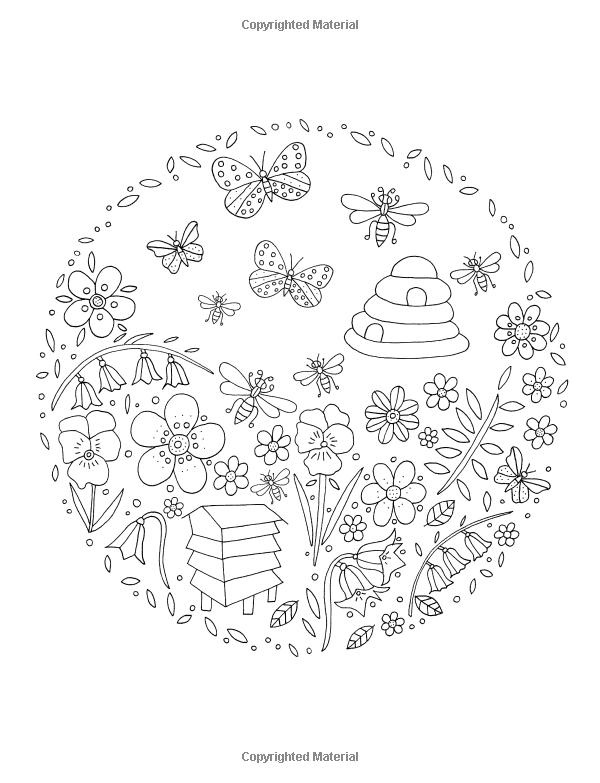 Amazon Flower Hunter Colouring Book 9781908072917 De Ann