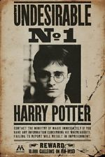 Harry Potter - Indésirable No 1 Wanted Poster Affiche (91x61cm) #71942