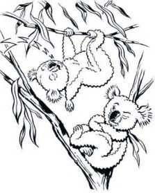 Koalas Coloring Sheets Yahoo Image Search Results It S Save The