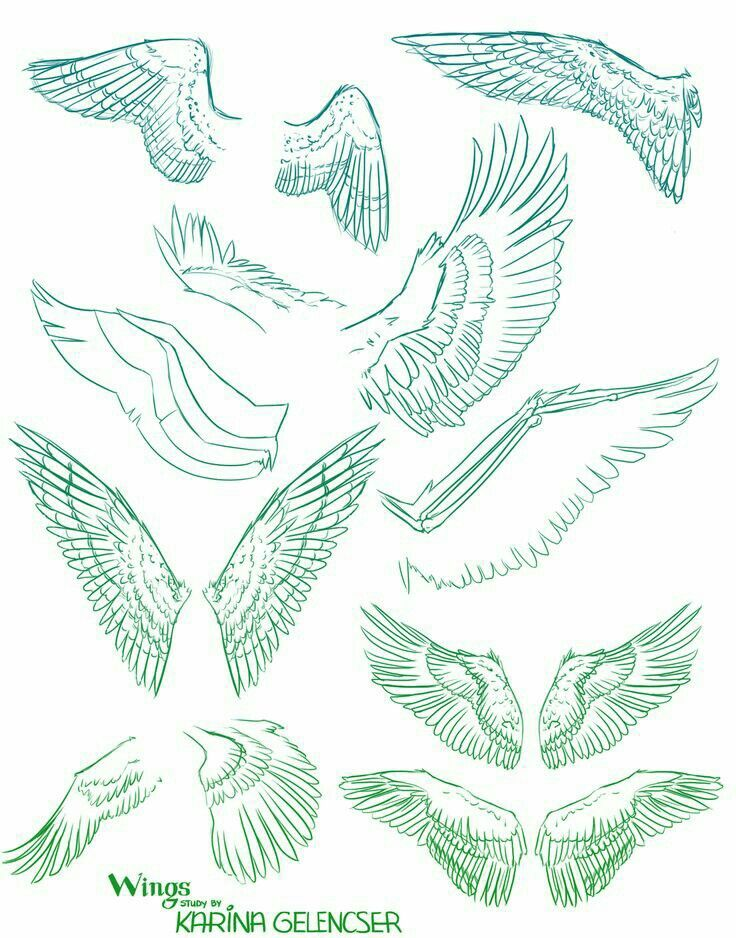 Wings How To Draw Manga Anime Wings Drawing Drawings Art Reference