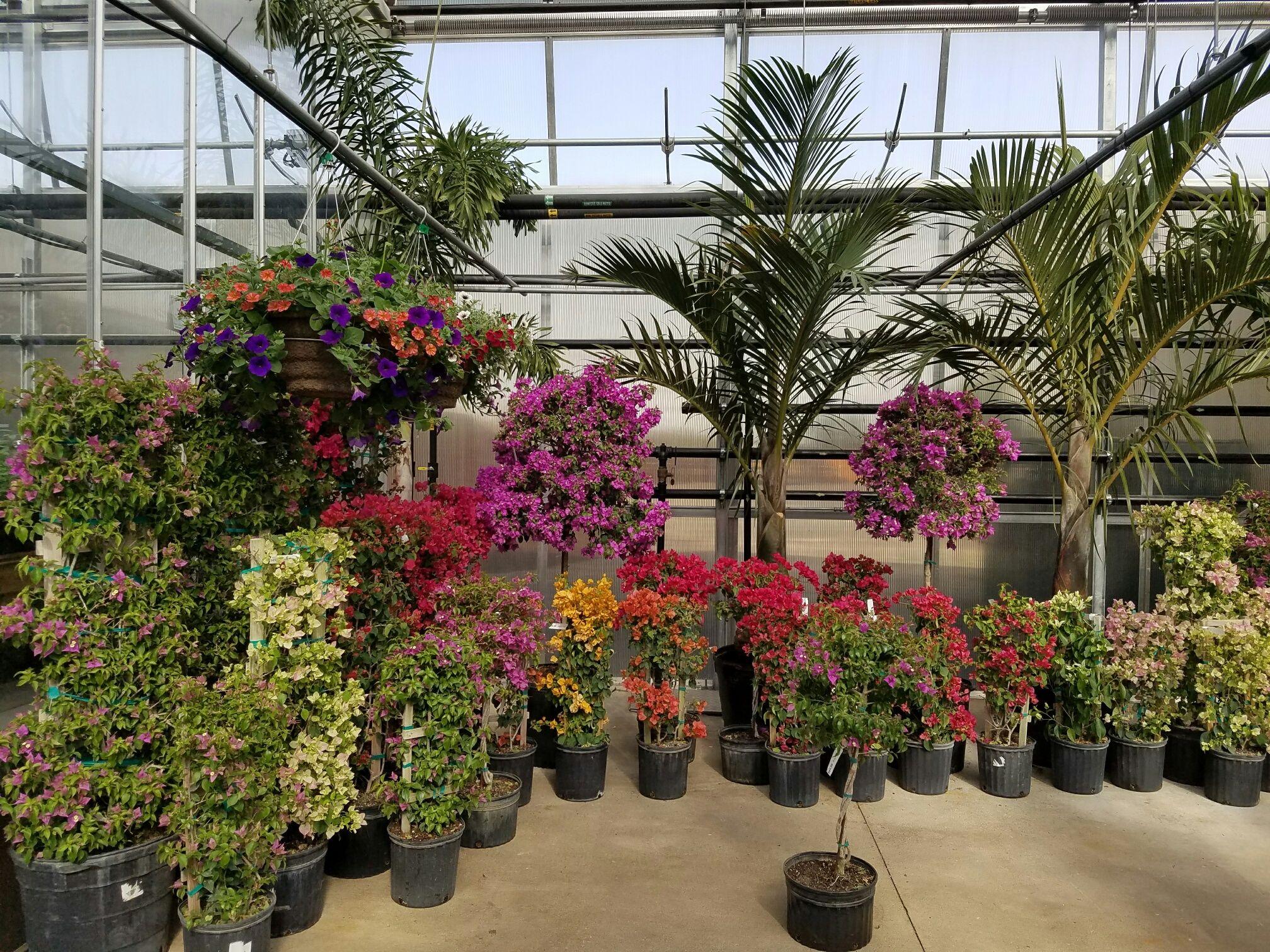 Gensler Gardens, Loves Park, IL | Gensler Gardens | Pinterest ...