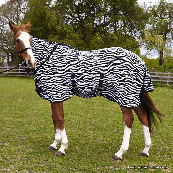 Elico Zebra Combo Fly Rug A Good Quality Mesh Cooler In An Attractive Design
