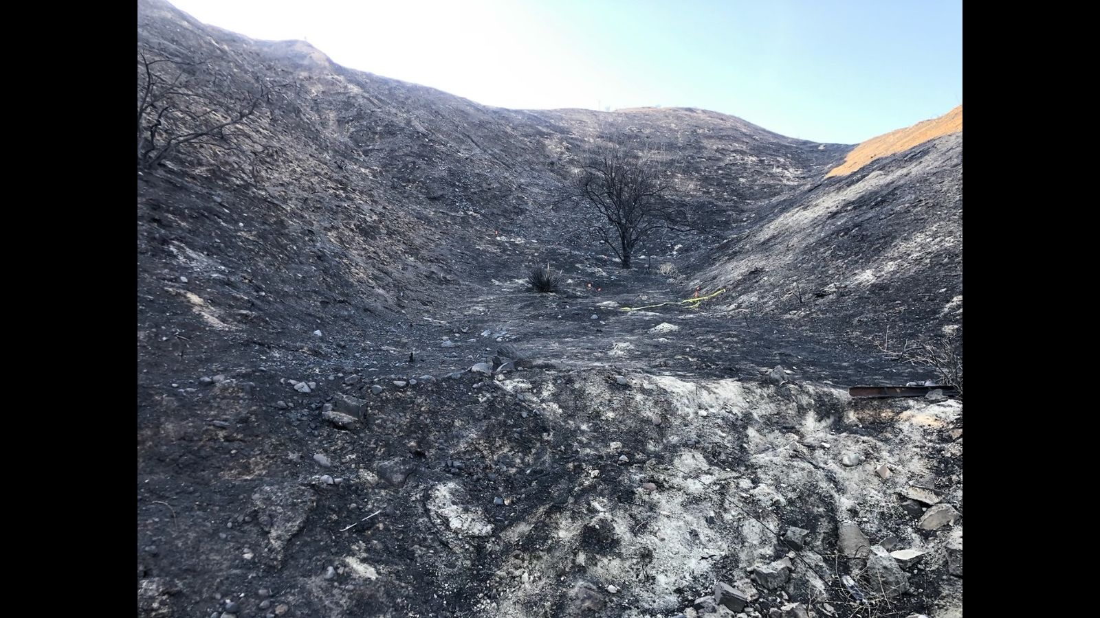 Human Remains Found In Burnt Area Near Tick Fire In Santa Clarita Not Related To Fire Authorities Say Fire Area Canyon Country California Wildfires