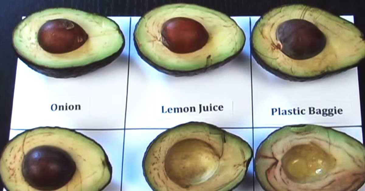 No more brown avocados!!! Come conservare l'avocado