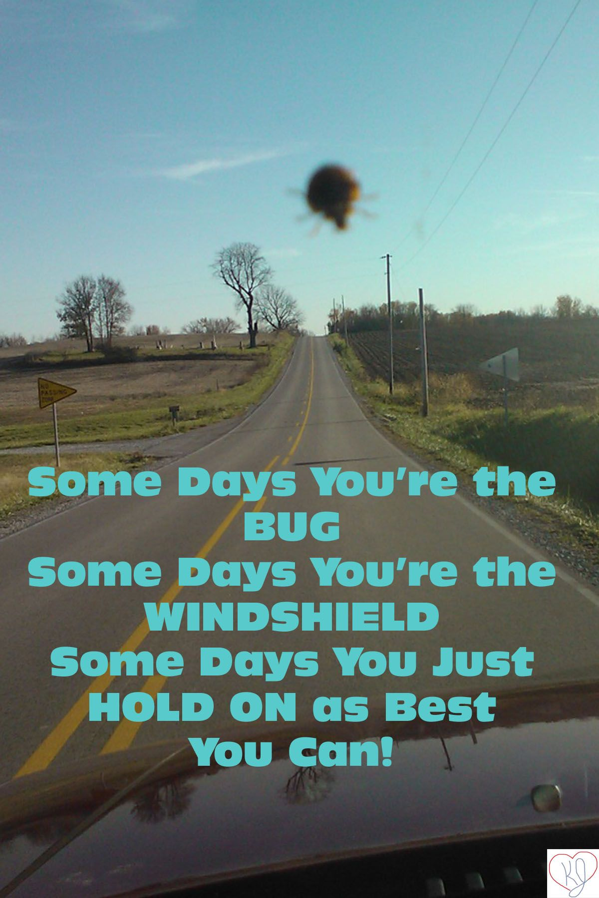 Some Days Youre The Bug Some Days Youre The Windshield And Some