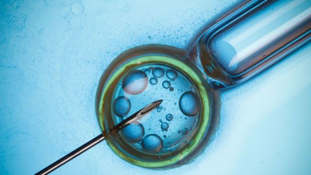Egg freezing is about as hot as a women's reproductive topic can get. But it's also extremely rare: Only about 2000 humans currently popul...